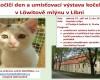 Umísťovací výstava koťat a koček v Libni